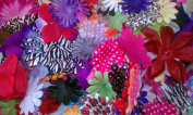 30ml of Flower Petals~SAMPLE PACK~40-50 Petals