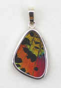 Sunset Moth Butterfly Small Wing-Shaped Pendant