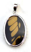 American Swallowtail Butterfly (Papilio Polyxenes) Wing Medium Oval Pendant