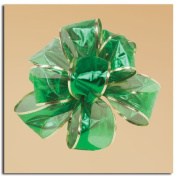 Sheer Green Luxurious Gold Edged Gift Boxed Wired Craft Ribbon 6.4cm x 10 Yards