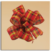 Winter Plaid Red and Lime Green Gift Boxed Wired Craft Ribbon 6.4cm x 10 Yards