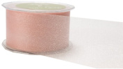 May Arts 5.1cm Wide Ribbon, White Sheer Twinkle