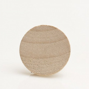 Package of 100 2.5cm Round Disc Unfinished Wood Cutouts - Ready to Be Painted and Decorated