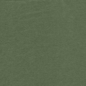 Sage Green 100% Cotton Flannel Fabric By the Yard Made in USA
