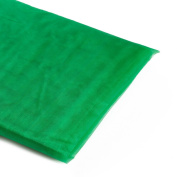 Koyal Wholesale 10-Yard Sheer Organza Fabric Bolt, 150cm , Kelly Green