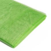Koyal Wholesale 10-Yard Sheer Organza Fabric Bolt, 150cm , Lime Green