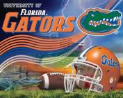 College Panel University of Florida Gators Ben Hill Gryphon Stadium Fleece Fabric Panel