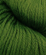 Cascade 220 9430 Highland Green Yarn