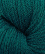Cascade 220 Sport 9420 Como Blue Yarn