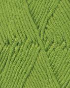 Berroco Comfort Chunky Yarn (5740) Seedling By The Each