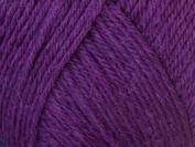 Ella Rae Classic Wool Yarn #327 Grape Vine