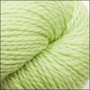 Cascade Yarns - Cascade 128 Superwash - LIME SHERBERT #850