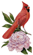 Indiana State Bird and Flower Northern Cardinal and Peony Counted Cross Stitch Pattern