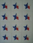 12 Applique Texas Star Quilt Blocks 17cm Squares