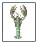 Nautical Seashore Atlantic Lobster Counted Cross Stitch Chart