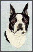 Pegasus Originals Boston Terrier Counted Cross Stitch Kit
