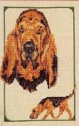 Pegasus Originals Bloodhound Counted Cross Stitch Kit