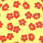 Mulberry Paper for Gift Wrapping & Crafts, Approx. 100cm x 60cm