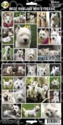 Pet Qwerks S45 West Highland White Terrier or Westie Dog Sticker