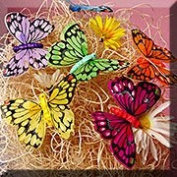 12ea - 3-1/8 X 2-1/2 Painted Lady Butterfly Decor