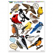 North American Birds - Finch Cardinal SLAP-STICKZ(TM) Party Scrapbook Craft Car Window Locker Stickers