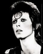 David Bowie Black And White Sticker