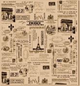 Tissue Paper 50cm x 80cm 4/Pkg-Paris
