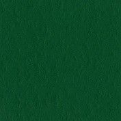 Bazzill Basics Paper T19-5414 Prismatic Cardstock, 25 Sheets, 30cm by 30cm , Classic Green