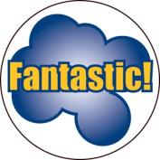 Ace Label 17689C 'Fantastic!' Teacher School Stickers, 2.5cm , Multicolor, 100 Per Roll
