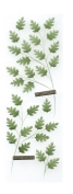 Martha Stewart Crafts Stickers, Green Leaves Millinery