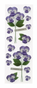 Martha Stewart Crafts Stickers, Pansies Millinery