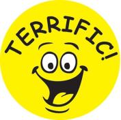 Ace Label 13689C 'Terrific' Teacher School Stickers, 6.4cm , Multicolor, Roll of 100