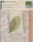 Mulberry Bark and Unryu Natural Gift Wrap Set