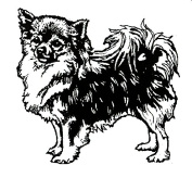 Dog Rubber Stamp - Chihuahua-1E (Size