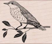 Hero Arts Wise Bird Woodblock Decorative Stamp