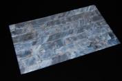 White Freshwater Shell Coated Veneer Sheet