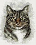 Tabby Cat Portrait Counted Cross Stitch Kit