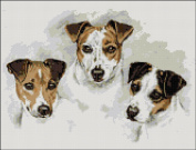 Jack Russell Trio Counted Cross Stitch Kit
