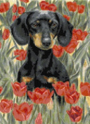 Dachshund in Tulips Counted Cross Stitch Kit