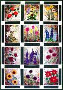 Whims Watercolour Quilt Kits Rachel's Flower Garden Quilting Supplies