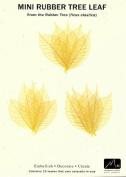 Skeleton Leaves- Pack of 15 Citrine Mini Rubber Tree