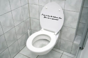 I AIM TO KEEP THIS BATHROOM CLEAN decal sticker funny