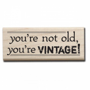 Mounted Rubber Stamp 3.8cm x 10cm -You're Vintage