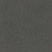 Bazzill Basics Paper T19-10150 Prismatic Cardstock, 25 Sheets, 30cm by 30cm , Zinc