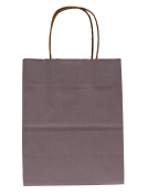 Premier Packaging 15 Count Pinstripe Shopper Gift Bag, 21cm by 27cm