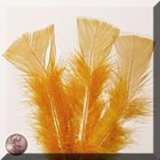 1ea - Large Gold Turkey Flat Feather