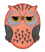 Cute Owl Cartoon DIY Embroidered Sew Iron on Patch
