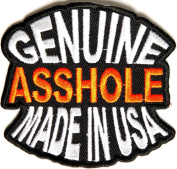 Genuine Asshole Made In Usa Funny Iron on Patch, Embroidered iron on, 7.6cm x 7cm