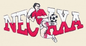 Soccer Necaxa Logo Embroidered Iron on or Sew on Patch