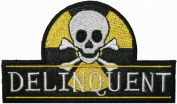 Delinquent Skull Crossbones Iron On Patch Kalan